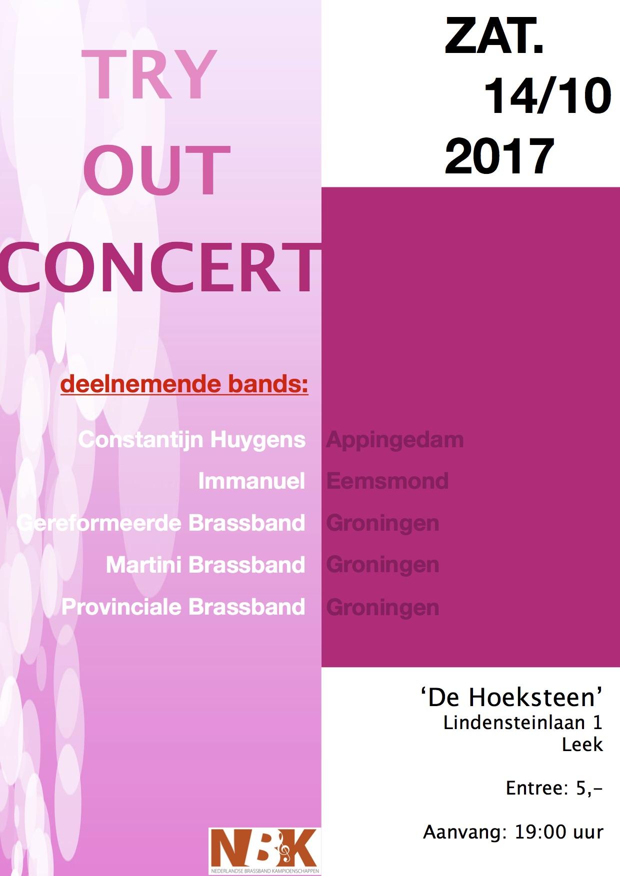 poster-groninger-bands-2017.jpg#asset:525